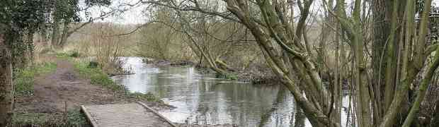 Serious flooding at Moor Copse