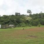 Patawa pk35 (c) Jean Cerda, 2009