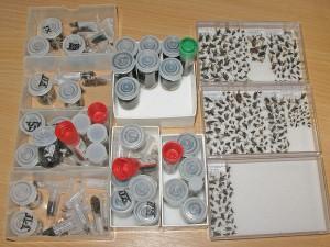 samples-002