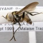 specimen-098-02-640