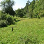 The old Range, Warburg nature reserve